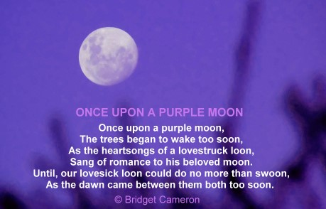 Once upon a purple moon