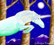 Shimmer Unicorn.