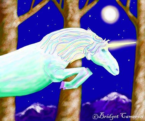 Shimmer Unicorn