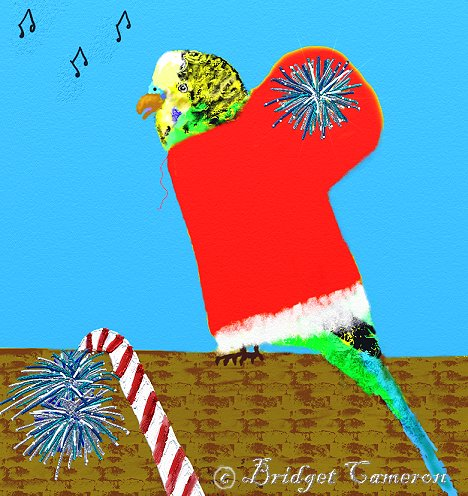 The xmas budgie by Bridget Cameron