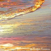 golden surf by Bridget Cameron