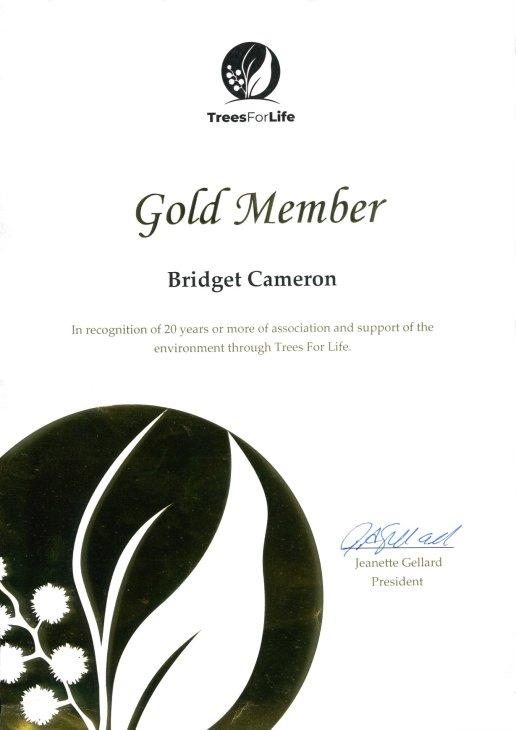 gold member certificate